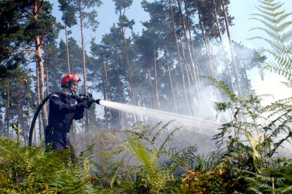 forest fire class a wetting foaming agent