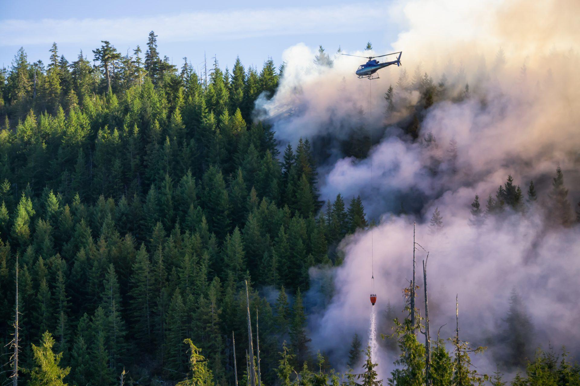 emulseur sans fluor helicoptere